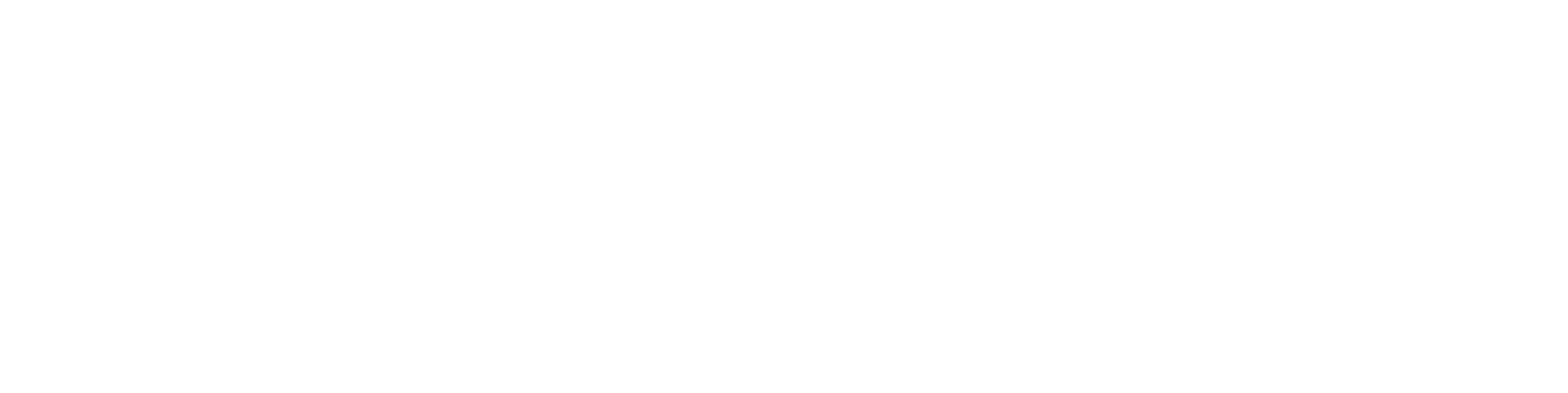 LVNLIFE Logo